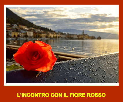 Come far emergere l'Essenza del Fiore Rosso…..