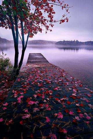 colori_autunno